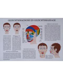 Poster Gezichtsdiagnose- en massage 60x42cm