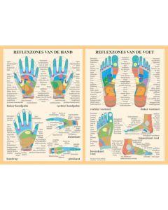 Poster Hand en Voet reflexologie A4