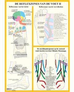 Poster De Reflexzones van de voet II